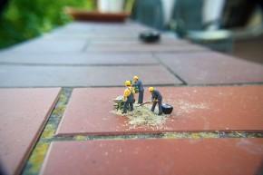 Miniatur9