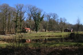 Waldhütten5